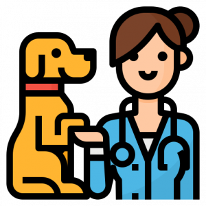 Veterinarian with a dog